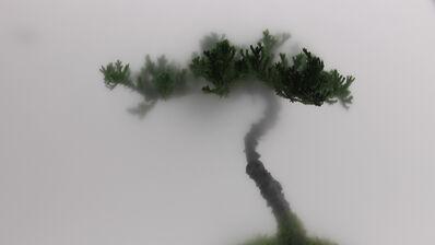 Wu Chi-Tsung, 'Still Life 01-Pine', 2009