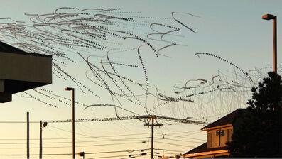 Dennis Hlynsky, 'Line Birds 2'