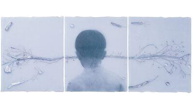 Sibylle Peretti, 'Still', 2016