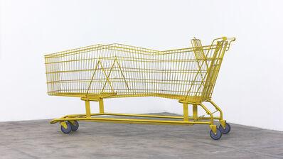 Rubén Ortiz Torres, 'Long Shopper (Limo)', 2015