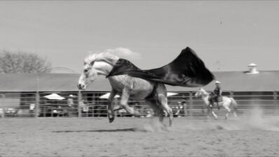 Emmanuel Le Cerf, 'Bronco', 2010