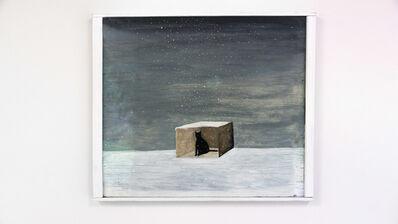 Noel McKenna, 'Cat in Box in Snow', 1999