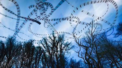 Dennis Hlynsky, 'Black Buzzards'