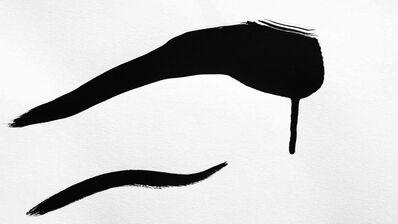 Anne Deleporte, 'Zebra Drawing 3', 2013