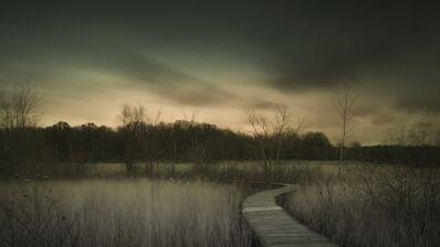 Brian Day, 'Crosswinds Marsh Wetland Interpretive Preserve', 2017
