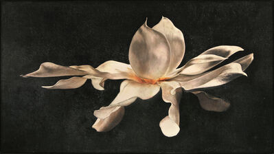 Maggie Hasbrouck, 'Dream of The Southern Magnolia', 2017