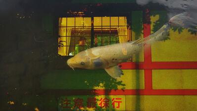 Taeko Nomiya, '魚 Sakana', 2019