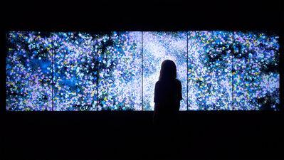 teamLab, 'Flowers and People - Dark', 2015