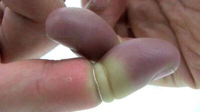 Élan Jurado, 'Finger & Pin', 2012