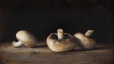 Dana Zaltzman, 'Mushrooms', 2018