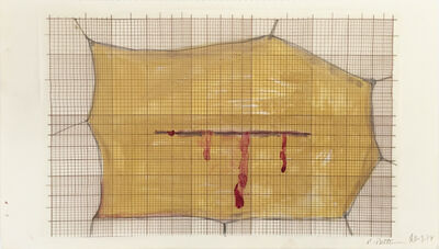Renate Bertlmann, 'Skin with blood', 1977