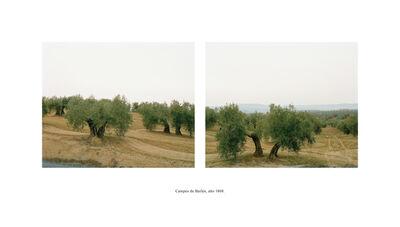 Bleda Y Rosa, 'Campos de Bailén, año 1808 (Serie Campos de batalla. España 1994-1996)', 1999