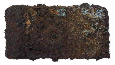 Toshiyuki SHIBAKAWA, '表象II, 40140518 (兩千年後出土的相機化石) AppearanceⅡ.40140518(Camera Fossil Excavated 2000 Years Later)', 2014