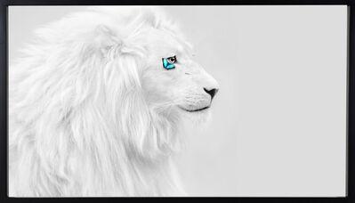 SN, 'White Lion ', 2020