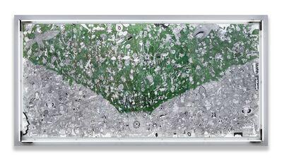 Mehmet Sinan Kuran, 'Evergreen', 2017