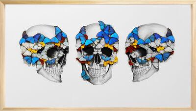 SN, 'Tripple Skull ', 2019