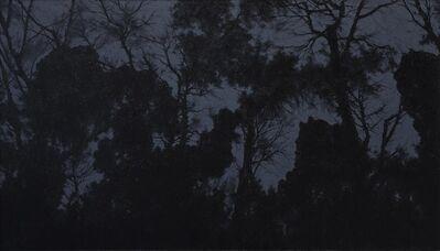 Pan Jian 潘剑, 'Shadow of Light 1', 2015