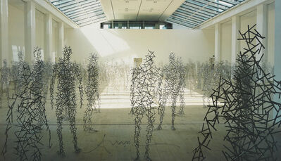 Antony Gormley, 'Domain Field', 2003