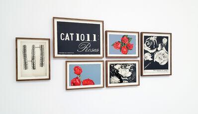 Marcel van Eeden, '(CAT 10.1.1:Roses)', 2014