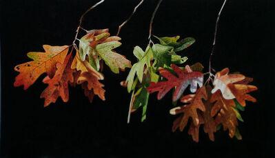 Greg Mort, 'Autumn Aurora', 2011