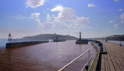 Steve Whitehead, 'View of Whitby'