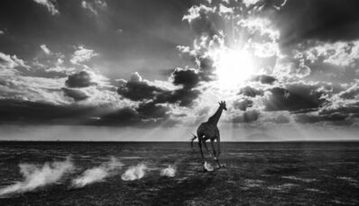 David Yarrow, 'Heaven Can Wait ', 2014