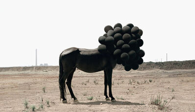 Andrea Galvani, 'Death of an Image #5', 2005