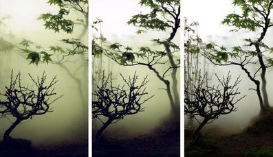 Wu Chi-Tsung, 'Landscape in the Mist 002', 2012