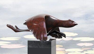 Evert den Hartog, 'Flying Coot (Opvliegende Meerkoet)'