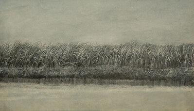 Tomás Sánchez, 'El Canaveral', 1982