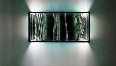 Anthony James, 'Birch', 2015