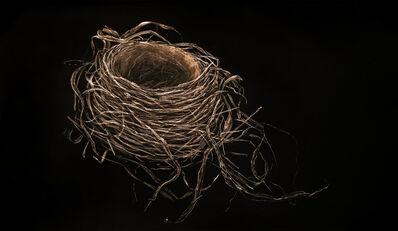 Mitchell Lonas, 'Robin Nest, Autumn', 2018