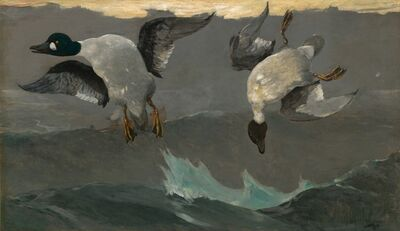 Winslow Homer, 'Right and Left', 1909