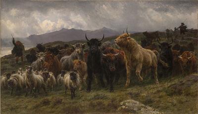Rosa Bonheur, 'Highland Raid', 1860