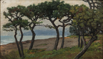 Charles Caryl Coleman, 'View of Capri Looking Toward Vesuvius'