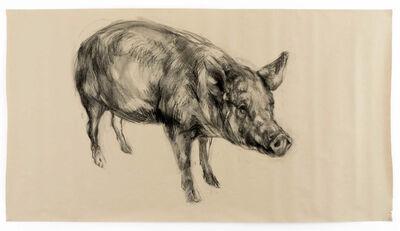 Nicola Hicks, 'Pig', 2017