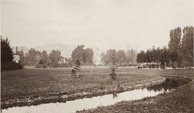 Charles Marville, 'Étude des fleuves et des arbres, Bois de Boulogne', 1858/1858