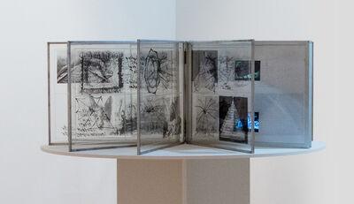 Carolee Schneemann, 'Venus Vectors', 1986-1988