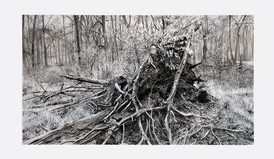 Kees van der Knaap, 'Decomposition', 2020
