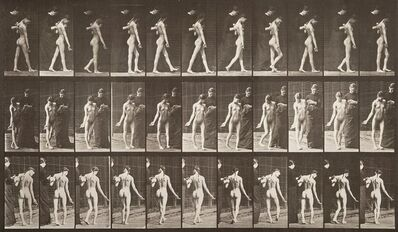 Eadweard Muybridge, 'Animal Locomotion, Plate 541', 1887