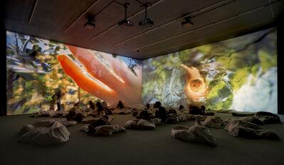 Pipilotti Rist, 'Worry Will Vanish Horizon', 2014
