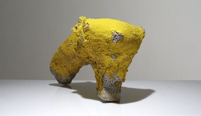 Aneta Regel, 'Yellow Form', 2013