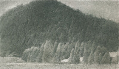 Weijun Shan, 'Mountains No.7 山野之七', 2014
