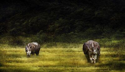 Toru Tanno, 'Subterranean †rhinoceros 2', 2017