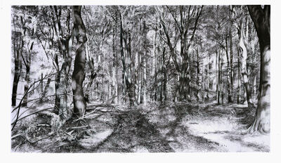 Kees van der Knaap, 'Tangled wood 3', 2020