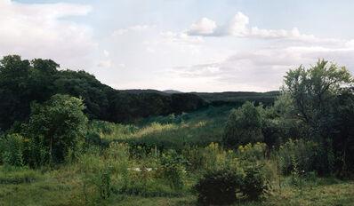 Beate Gütschow, 'LS #5', 2000