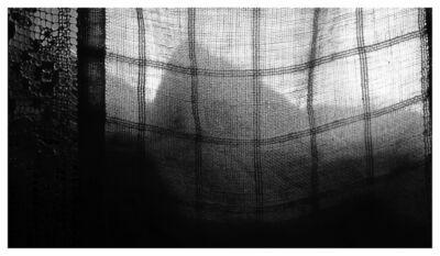 Mircea Stanescu, 'MORNING TRAP 7', 2015