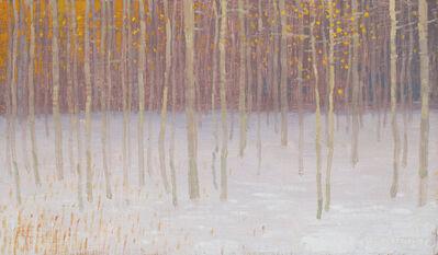 David Grossmann, 'Snow and Remants of Autumn Colors', 2019