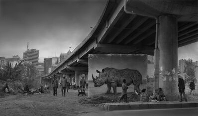 Nick Brandt, 'Underpass with Rhino & Egret', 2014