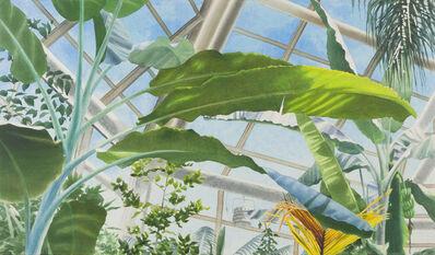 Ben Norris, 'Brooklyn Botanical Garden No. 2: Greenhouse II', 1991
